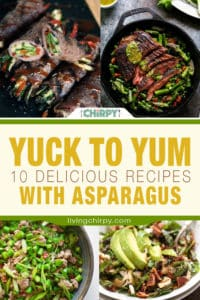 Yuck to Yum – 10 Delicious Recipes with Asparagus
