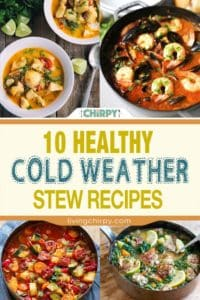 10 healthy cold weather stew recipes