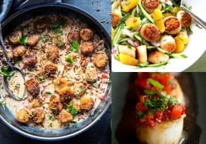 10 Wholesome Recipes with Scallops