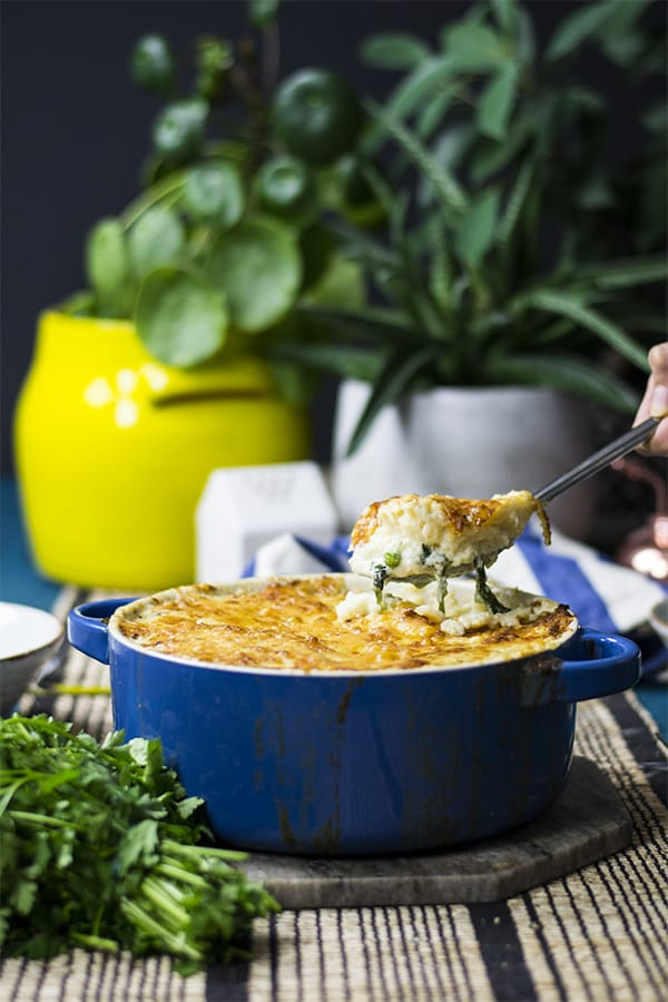 Keto fish pie in a blue baking dish surrounded by fresh herbs and potted plants with a blue background.